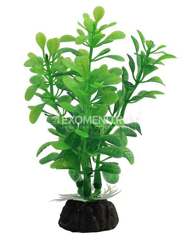 Растение 1030LD