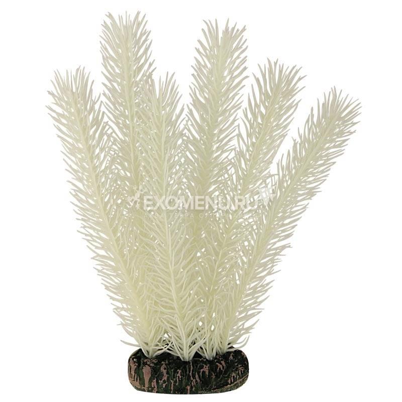 Растение 20090Y светящееся