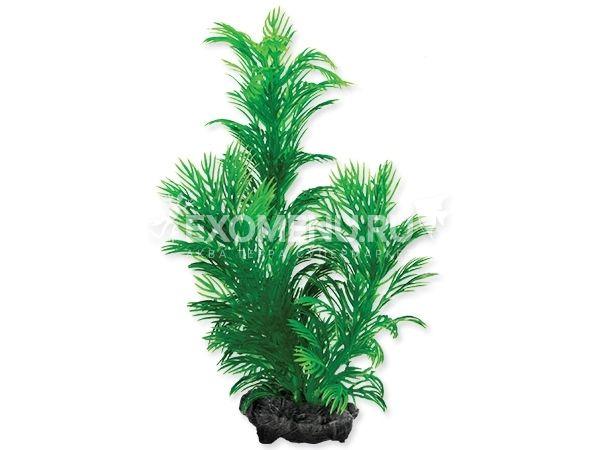Растение аквариумное Green Cabomba (S) 15 см. с утяжелителем 270206