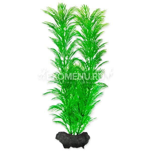 Растение аквариумное Green Cabomba (M) 23 см. с утяжелителем 270626
