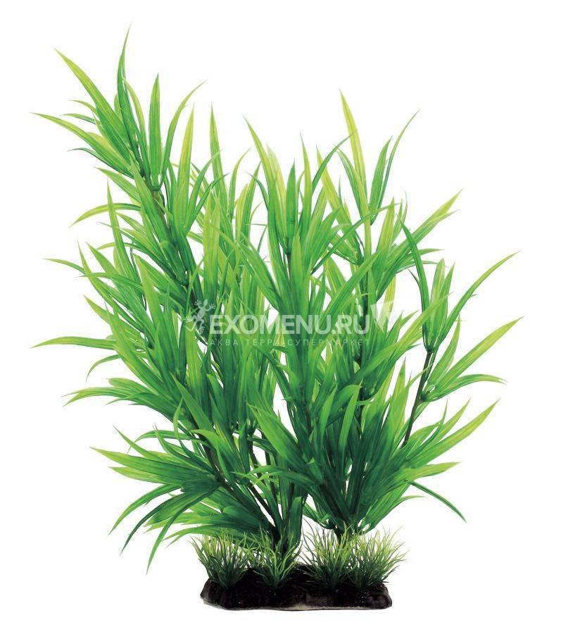ArtUniq Heteranthera 35 - Искусственное растение Гетерантера, 35 см
