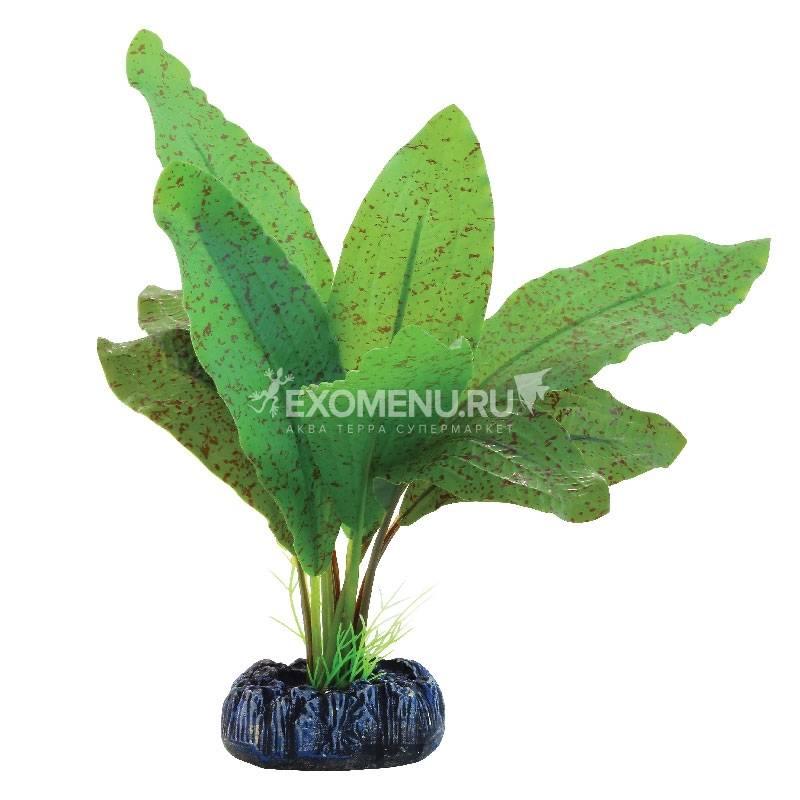 Растение шелковое