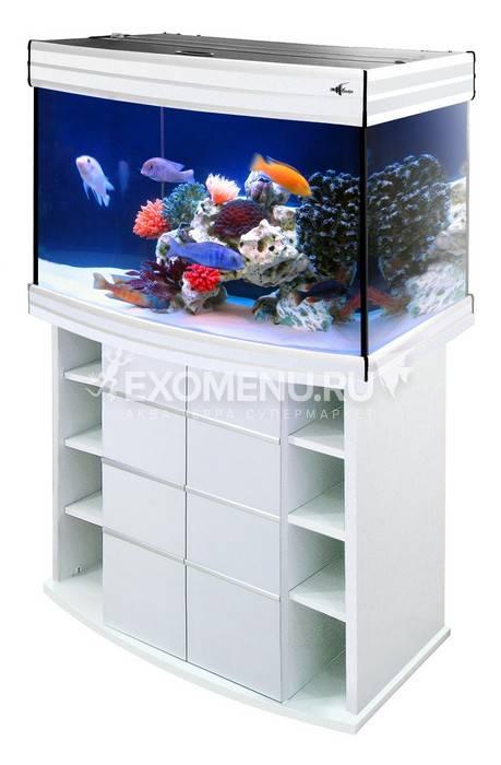 Аквариум Biodesign ALTUM PANORAMIC 135, 135 л, 81х41х53 см