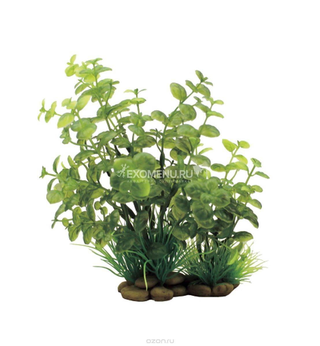 ArtUniq Cardamine 20 - Искусственное растение Кардамин, 20 см