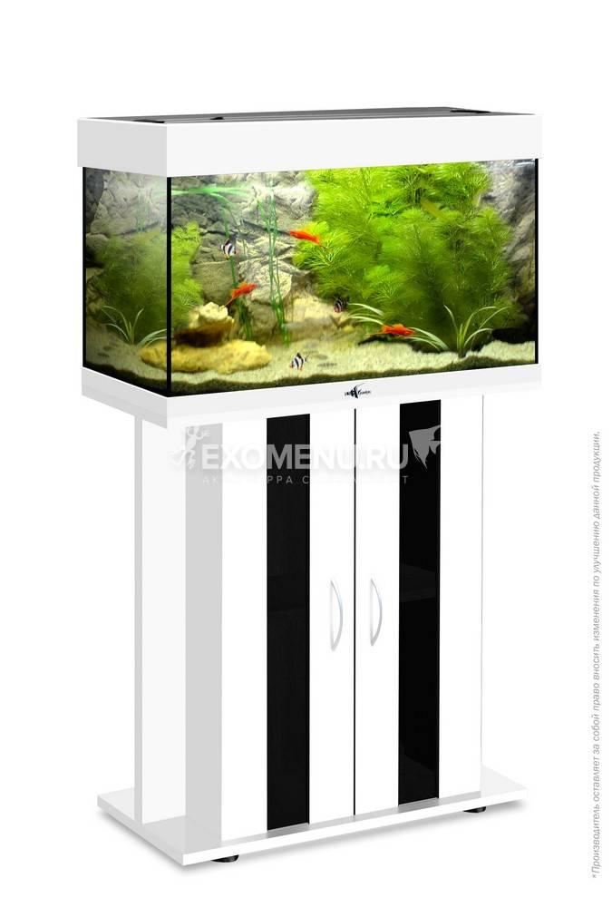 Аквариум Biodesign РИФ 80, 82 л, белый, 71х33х46 см