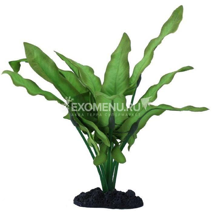 Растение шелковое PRIME Анубиас Хастифолия 30см фото