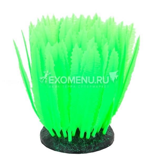 Флуорисцентная аквариумная декорация GLOXY Морская лилия зеленая, 10х7,5х11см фото