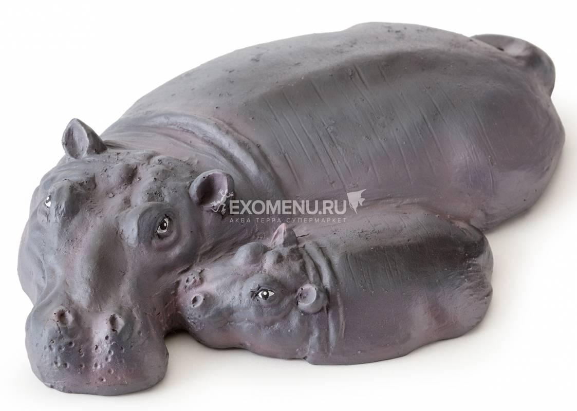 Берег для акватеррариума  - семья бегемотов