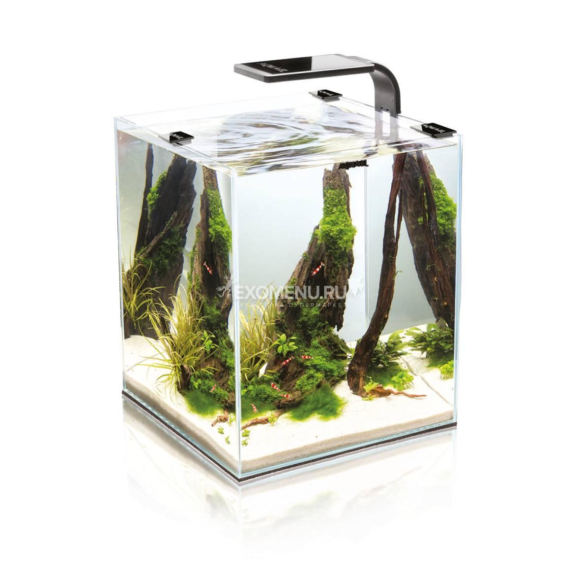 Креветкарий SHRIMP SET SMART PLANT II 30 черный, (30х30х35) укомплектован светодиодным светильником,фильтром, обогревателем