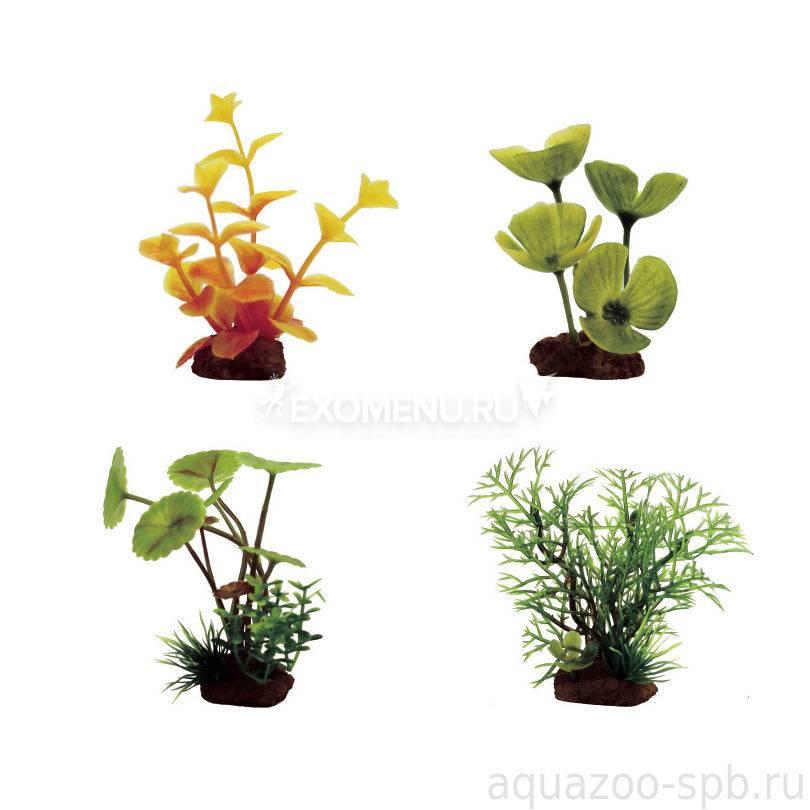 ArtUniq Plants Set 4XS - Набор искусственных растений Лизимахия оранжевая, Марсилия, Щитолистник, Перистолистник, 7-10 см, 4 шт