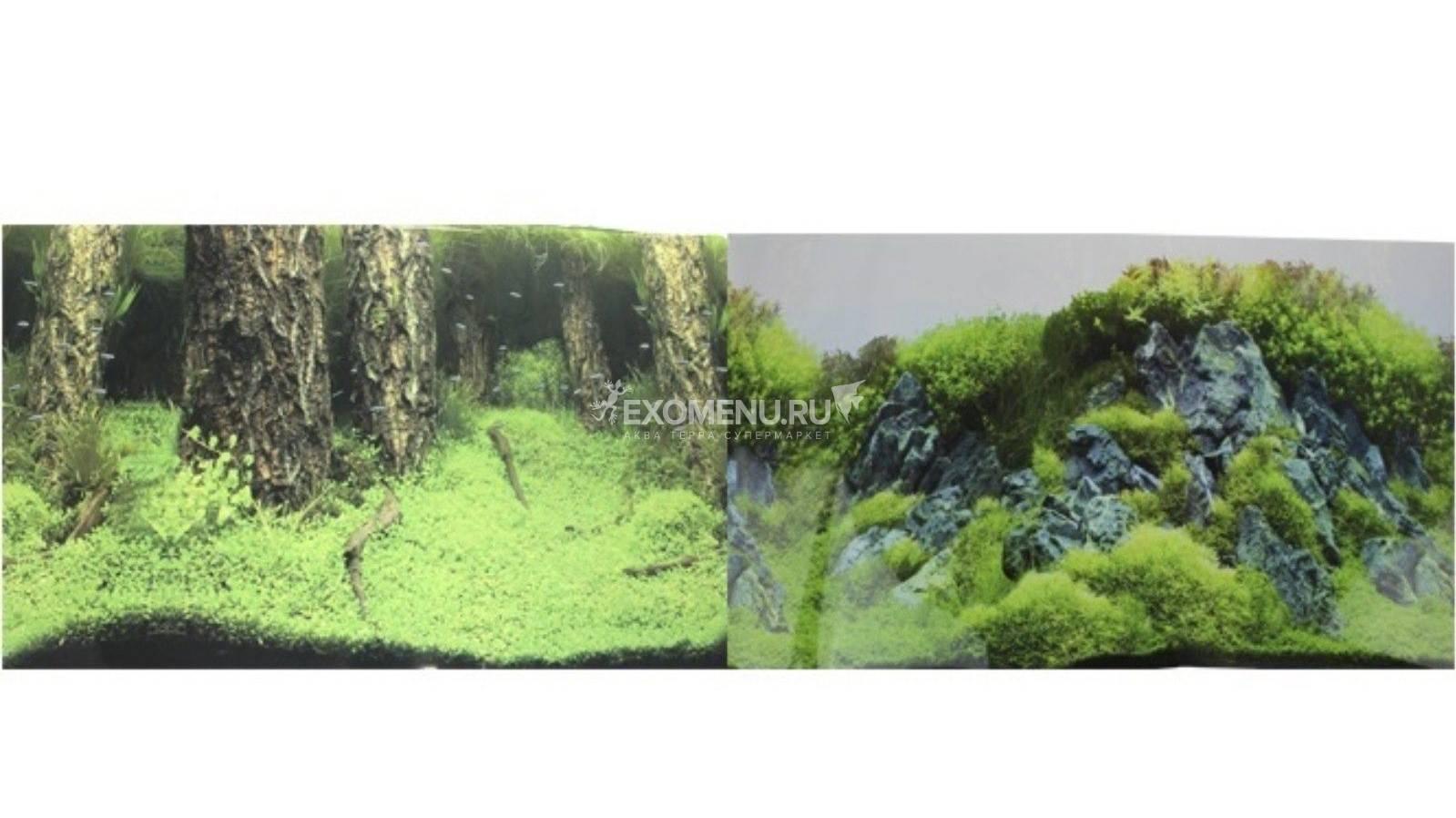 Фон для аквариума двухсторонний Затопленный лес/Камни с растениями 50х100см (9086/9087) фото
