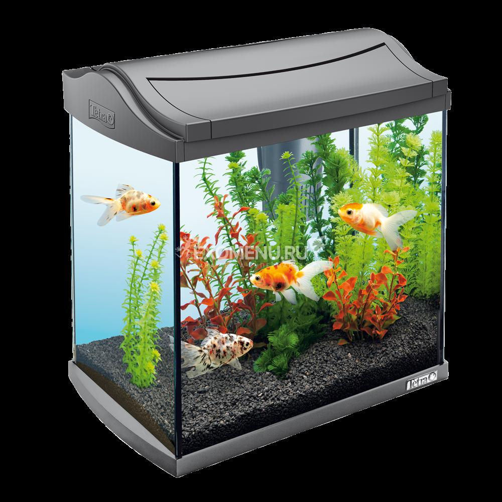 !Аквариум Tetra AquaArt 30l LED Goldfish