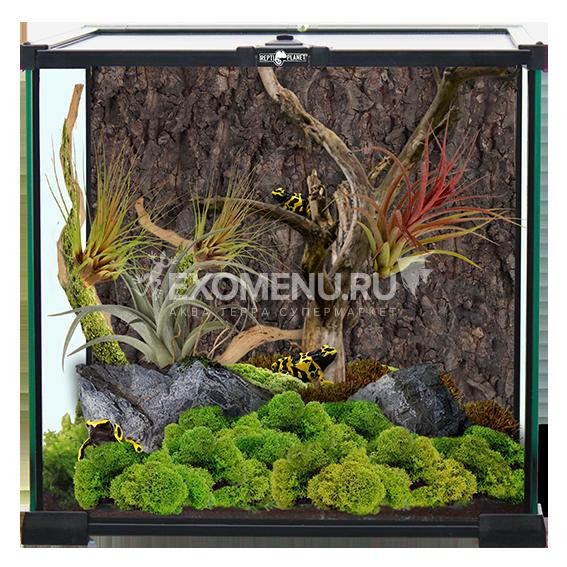 Террариум стеклянный 30х30х30 см