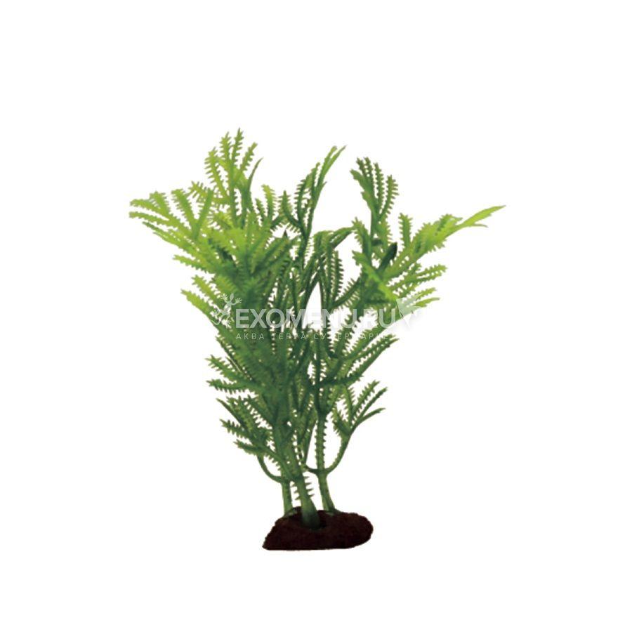 ArtUniq Hottonia Set 6x10 - Набор искусственных растений Хоттиния , 10 см, 6 шт