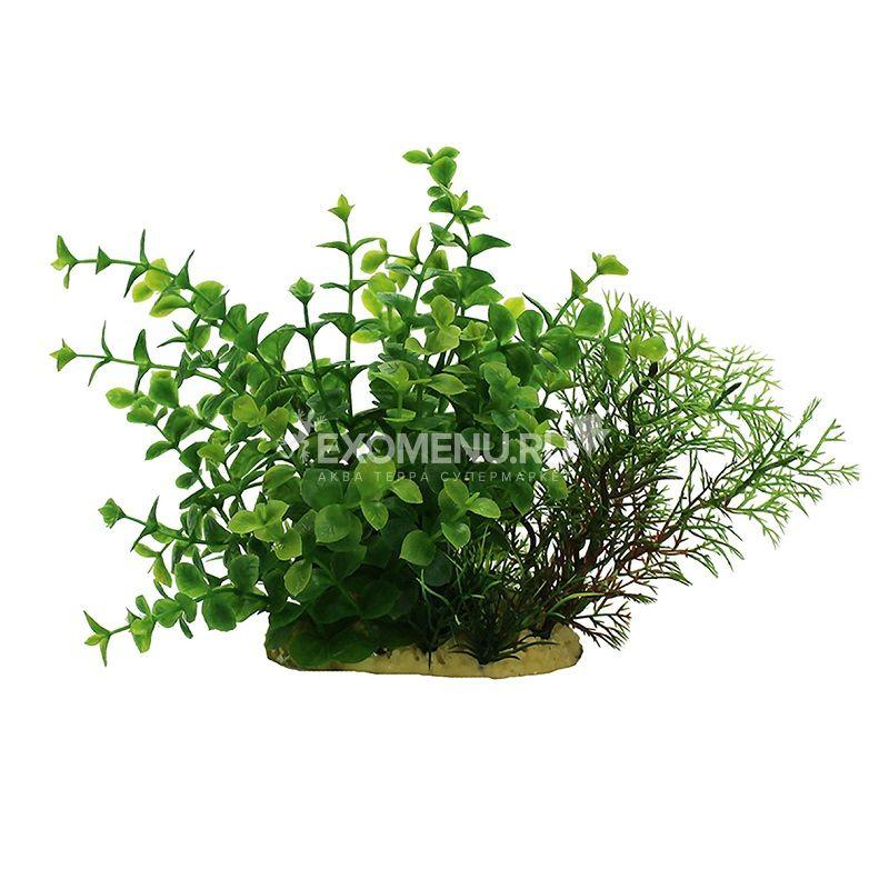 ArtUniq Ludwigia green mix 15 - Композиция из искусственных растений Людвигия зеленая, 15 см