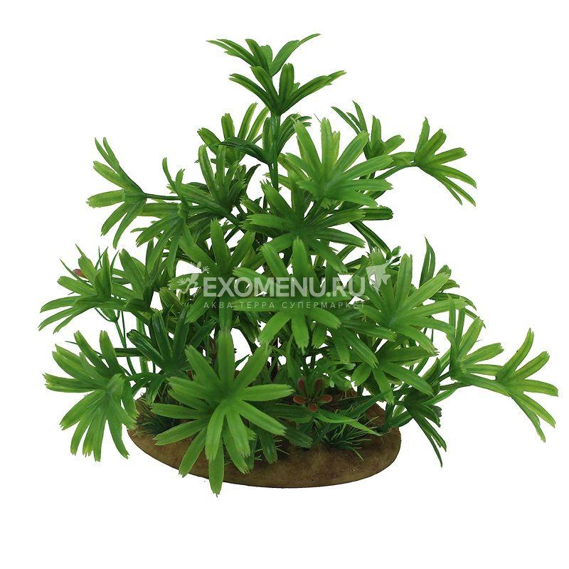 ArtUniq Bambusa green 15 - Искусственное растение Бамбуза зеленая, 15 см